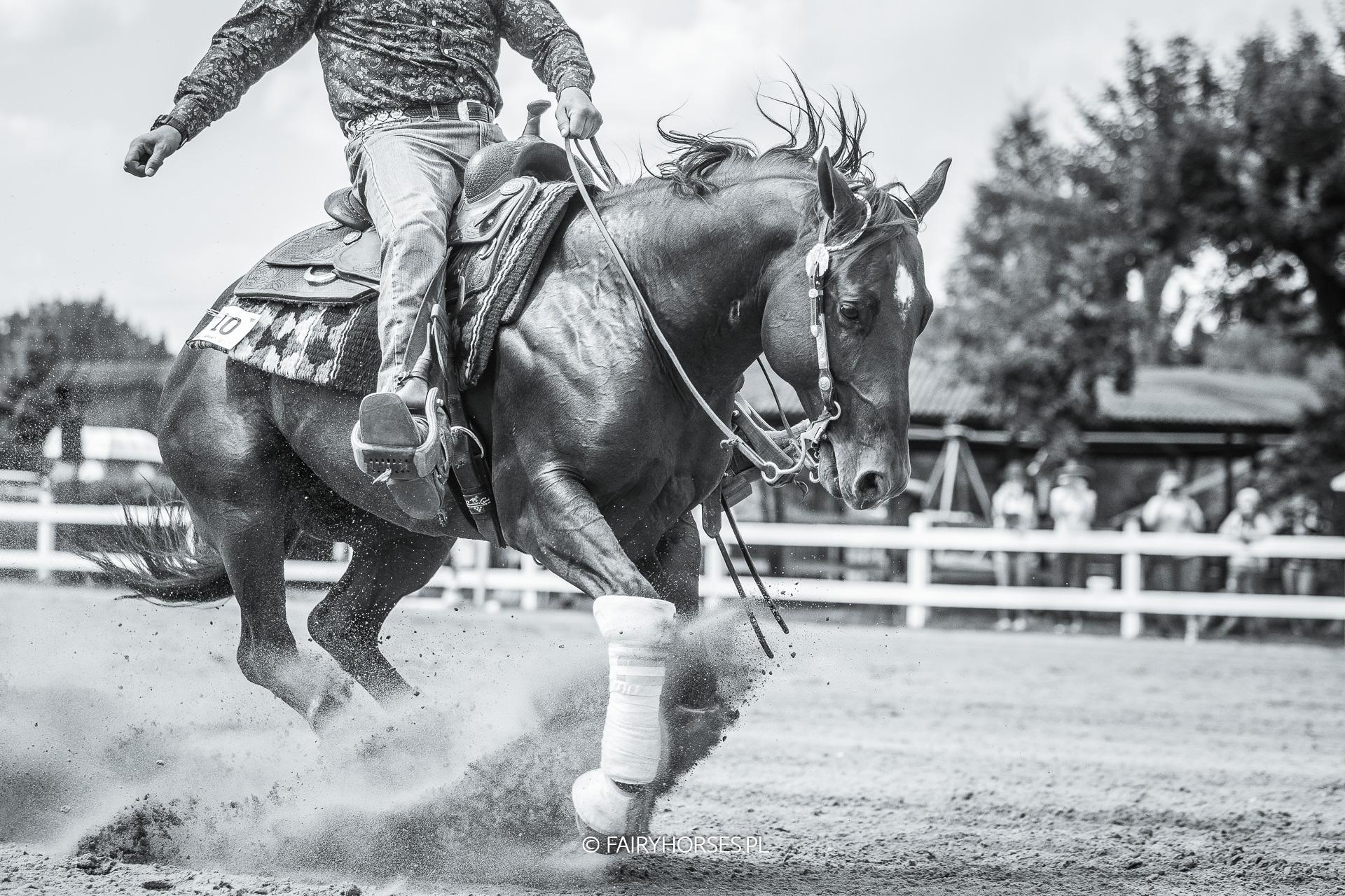 Sesja z koniem, zdjęcia jeździeckie, sesja konna, western