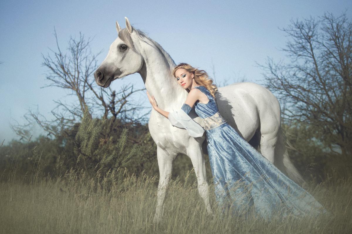 Wynajem konia do sesji fotograficznej