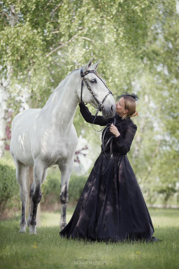 Sesja z koniem, zdjęcia jeździeckie, sesja konna, lusitano