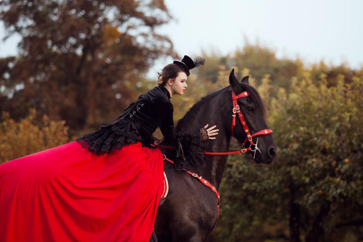 fotografia koni, sesja z koniem, ozdobne ogłowie