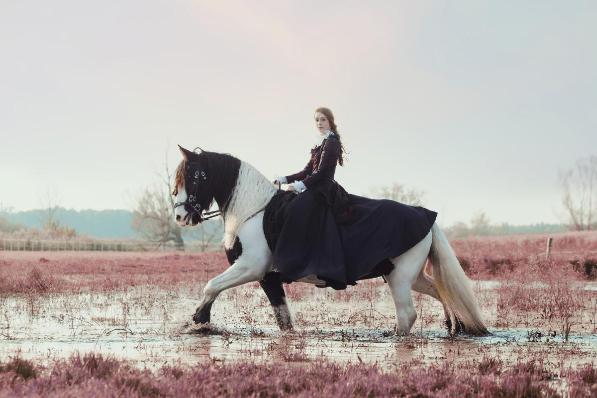 Sesje z końmi - sesja Julii i Elizabeth. Wykonujemy zdjęcia jeździeckie, sesje stylizowane z końmi, zdjęcia zootechniczne oraz zdjęcia z zawodów.