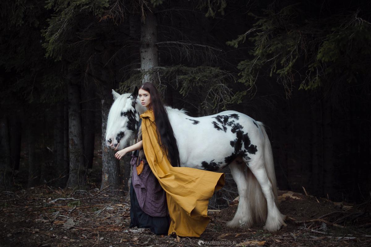 Jesienny Plener – Sesje fotograficzne z końmi dla każdego