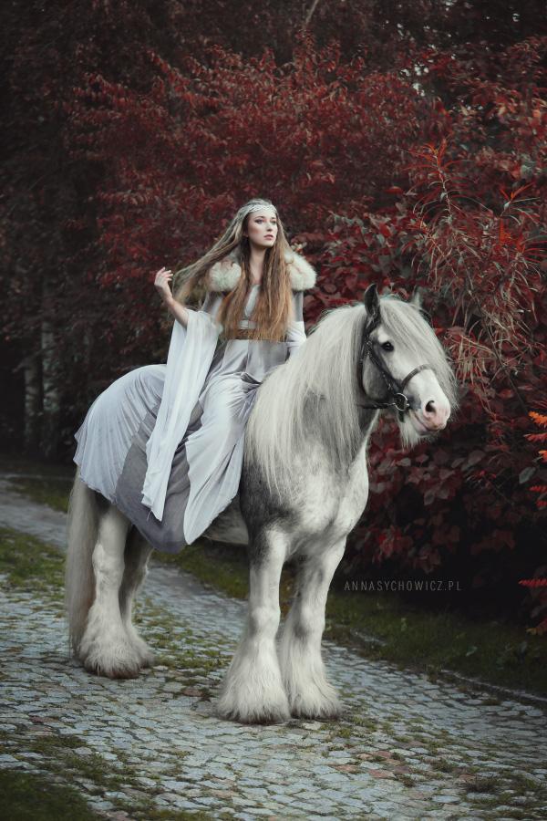 suknia elfa