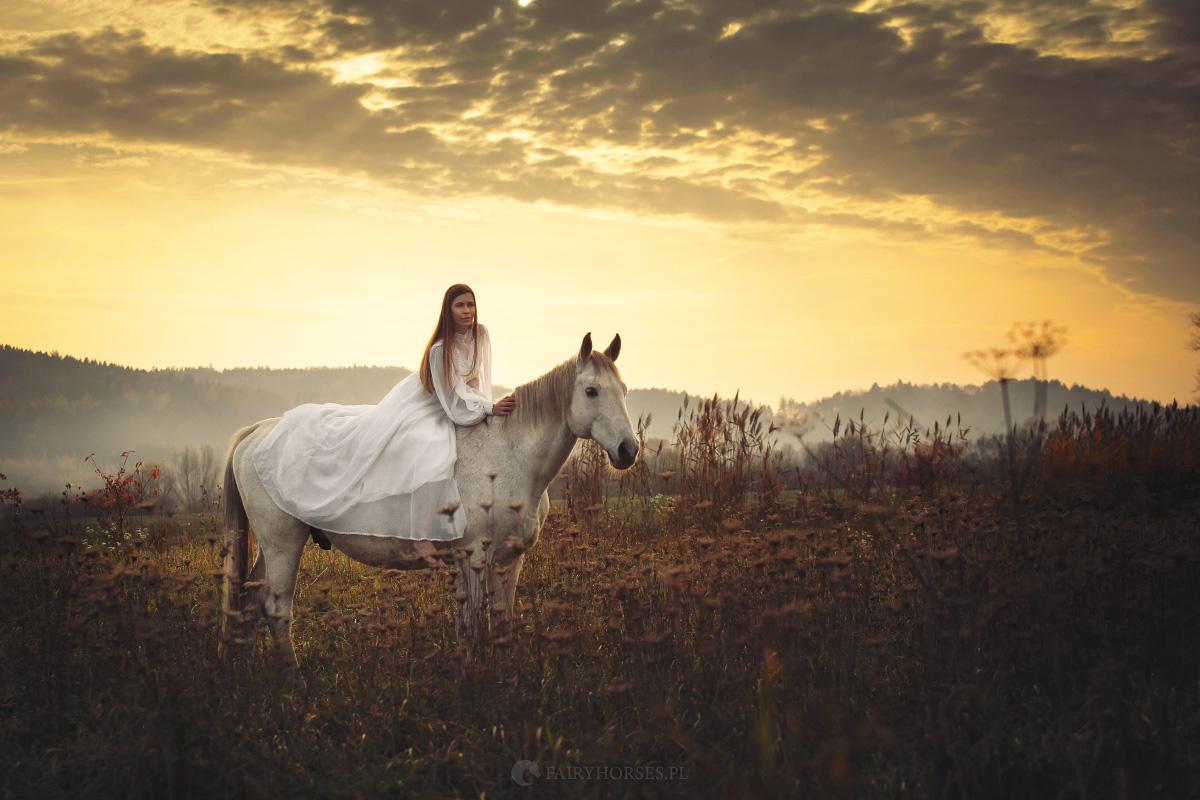 Sesja z koniem – oferta