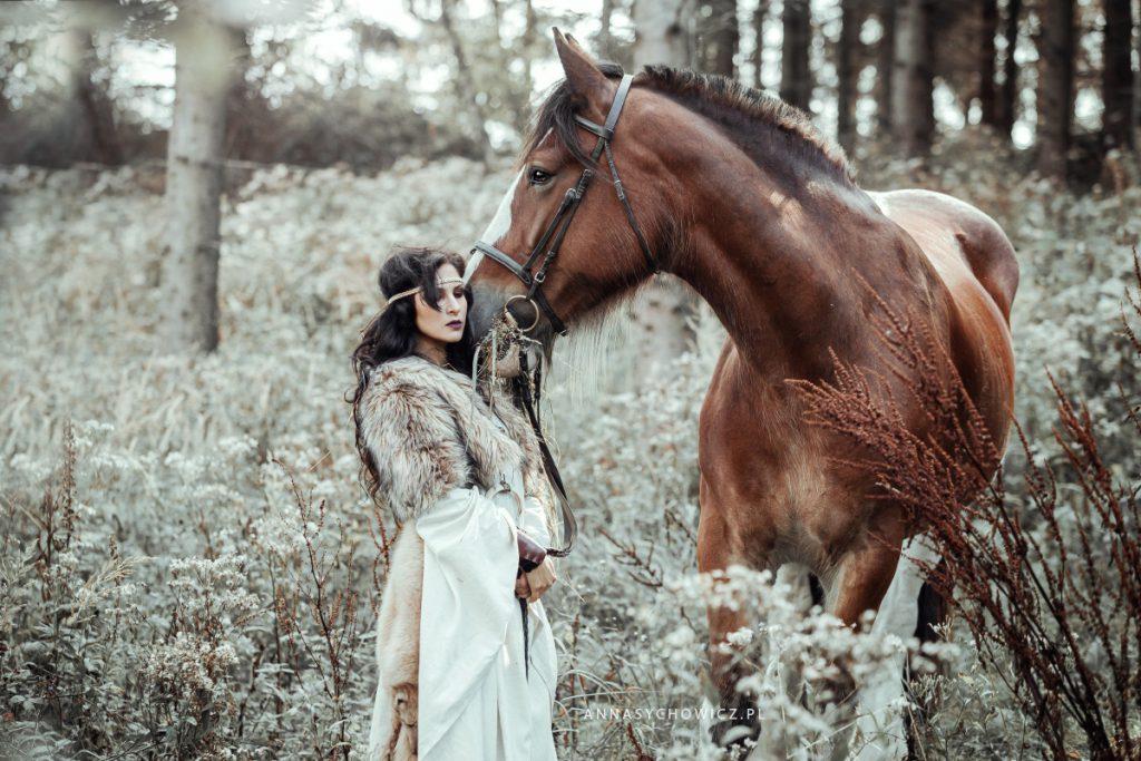 Fotografia koni, zdjęcia koni, portret konia na czarnym tle. Sesja z koniem, zdjęcia jeździeckie.