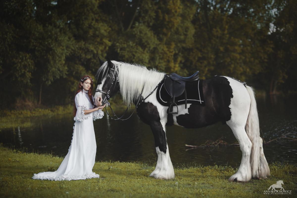 fotograf koni, fotografia koni, zdjęcia z koniem
