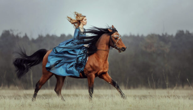 Natalia i Ghazallah Petronius Arabians